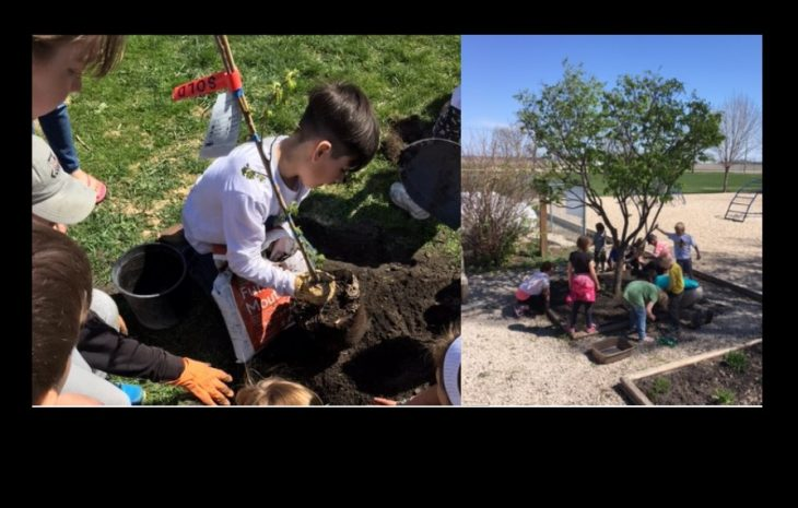 15 New Trees Planted At Roland School!